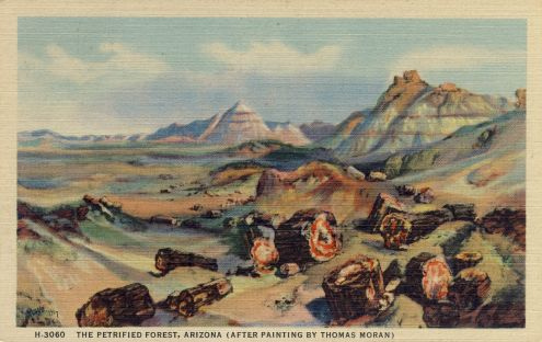 Postcard: Petrified Forest, Arizona