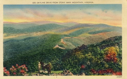 Postcard: Skyline Drive, Virginia