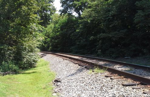 I_train tracks going through trees_RESIZED
